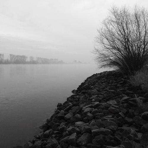 Unterwegs am Rhein
